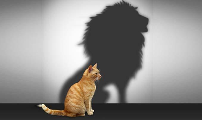 αυτοπεποίθηση, anxiety control titika mitsopoulou, τιτίκα μητσοπούλου ψυχολόγος
